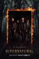 Supernatural season 12 - jared-padalecki-and-jensen-ackles photo