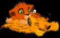 Taka and Mufasa  - scar photo