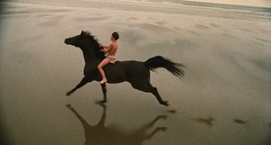The Black Stallion (1979) Still