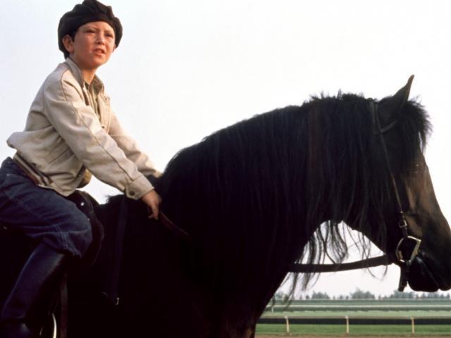 The Black Stallion (1979) Still