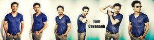 Tom Cavanagh  - Profile Banner