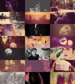 Twilight Saga - twilight-series fan art