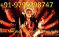 Vashikaran Mantra for love baba ji  91-9799298747 Chandigarh  - love photo
