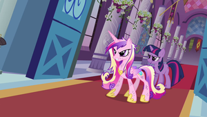 canterlot wedding