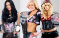 divaschamps - wwe-divas photo