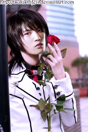 hero cos vampire knight سے طرف کی tsukistrife11