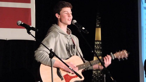 Shawn Mendes 壁纸 containing a guitarist and a 音乐会 entitled maxresdefault 1