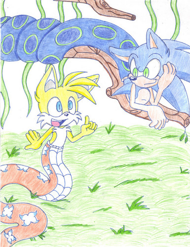 Sonadow wallpaper probably containing anime titled naga sonic n tails by crystal cm d4yipt7