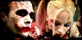 Mad Love ♥4 - the-joker-and-harley-quinn fan art