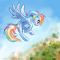 rainbow in the sky - rainbow-dash fan art