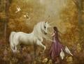 unicorn forest - fantasy photo