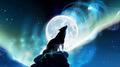 werewolf - fantasy photo