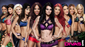 wwe TotalDivas  - wwe-divas photo