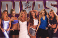 wwe divas - wwe-divas photo