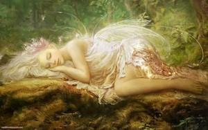 Beautiful Nature Fairy