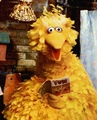 Big Bird (1971-1972) - big-bird photo