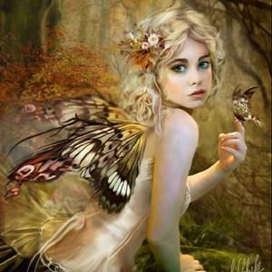 vlinder Fairy