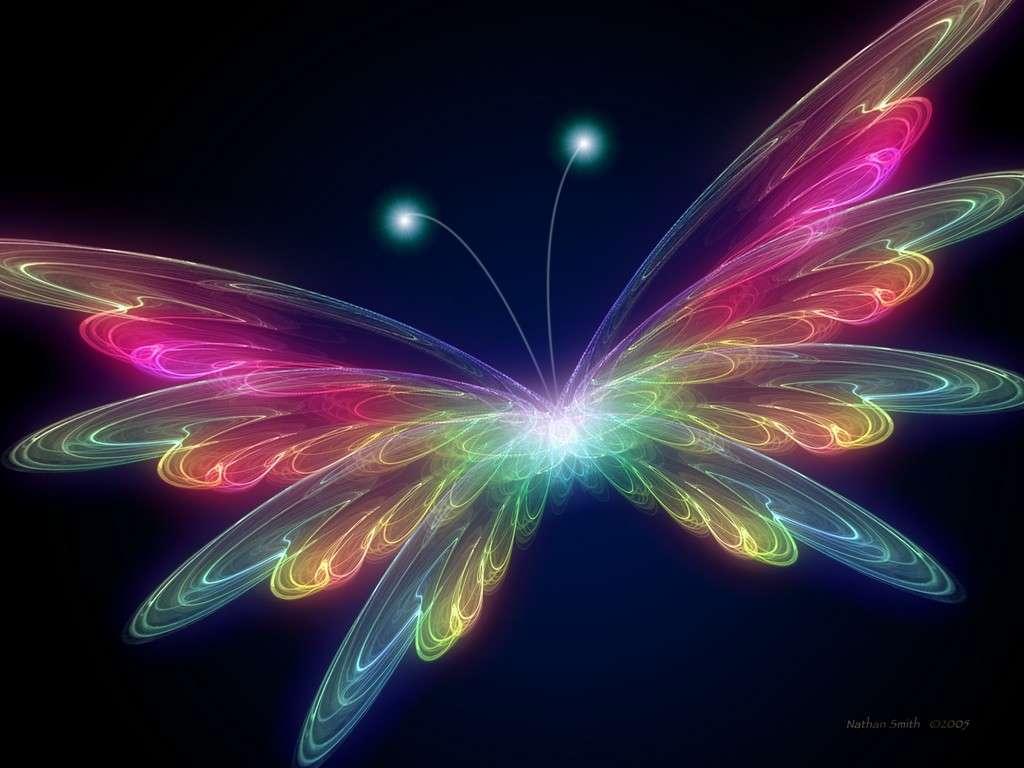 papillon Illustration