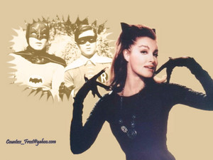 Catwoman (3)