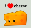 Cheese - random photo