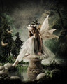 Child Fairy - fairies photo