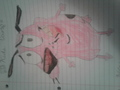 Courage Drawing By Me - courage-the-cowardly-dog photo