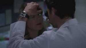 Derek and Meredith 341