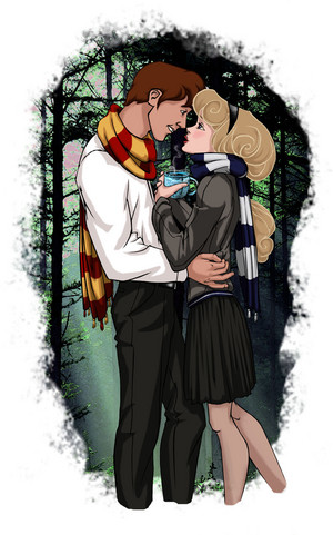 disney Hogwarts 2