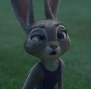 Drowsy Judy