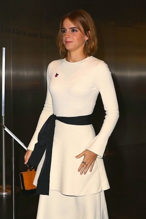 Emma Arriving at the Museum of Modern Art, NYC