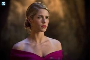 "Felicity in ""Genesis"""