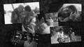 Flashbacks ~ Maggie Greene - the-walking-dead photo