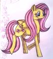 Fluttershy - my-little-pony-friendship-is-magic fan art