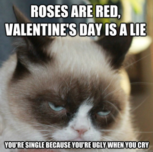 Grumpy Cat Meme 251