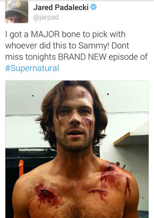 Jared's Tweet