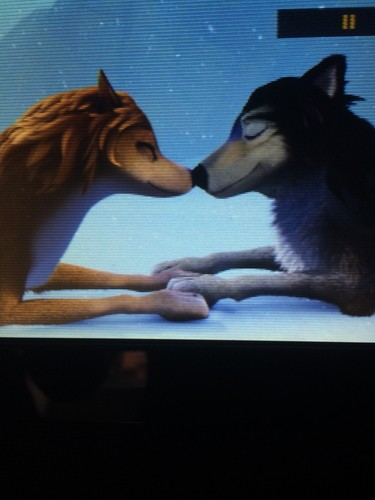 Alpha and Omega wallpaper titled Kate and Humphrey Nuzzle