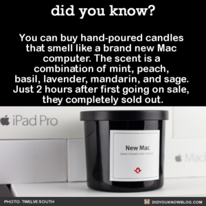 Mac-Scented Candles