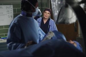 Meredith and Derek 343
