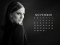 natalie-portman - NP.COM Calendar - November 2016 wallpaper