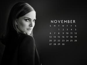 NP.COM Calendar - November 2016