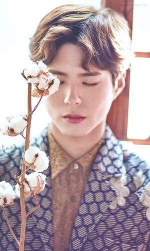 Park Bo Gum ♥ Bazaar China