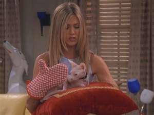 Rachel 19