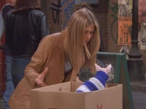 Rachel 31