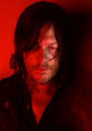 Season 7 Character Portrait ~ Daryl Dixon - the-walking-dead photo