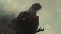 Shin Godzilla - godzilla photo