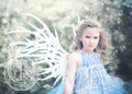 Snow Fairy 2 - fairies photo