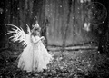 Snow Fairy 3 - fairies photo