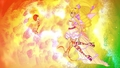 Stella bond - the-winx-club wallpaper
