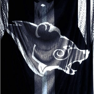 Stormcloak Flag