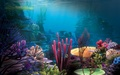 Underwater - mako-mermaids photo